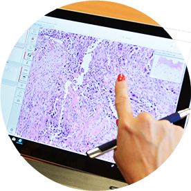 Digital_Pathology_Education